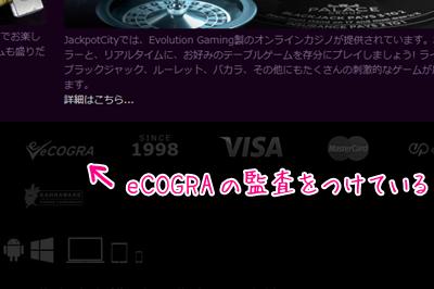 eCOGRAの監査 表記