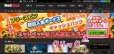 ネットベットカジノのホームページ(PC)