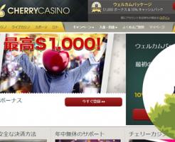 CherryCasinoの調査